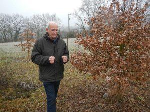 Détermination des arbres producteurs